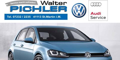 walter_pichler
